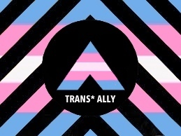 On Trans Ally-ship and the Ethics of Visibility: a conversation