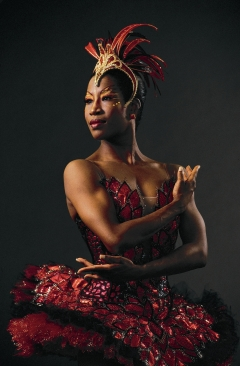 From the Houston Ballet's website (http://www.houstonballet.org/Education-Outreach/Teaching-Artists/) : Native Houstonian Lauren Anderson danced with Houston Ballet from 1983 to 2006, performing leading roles in all the great classical ballets, appearing across the world to critical acclaim, and in the process, becoming one of Houston Ballet's most beloved stars. In January 2007, Ms. Anderson assumed her new role of outreach associate in Houston Ballet's education department where she teaches ballet classes at Houston Ballet's Ben Stevenson Academy, conducts master classes at area schools, and lectures to students on dance and her historic career as one of America's most distinguished African-American ballerinas. She trained exclusively at Houston Ballet's Ben Stevenson Academy from the age of seven. She joined Houston Ballet in 1983 and in 1990 became the first African-American to be promoted to principal dancer at Houston Ballet – and one of the few African-American ballerinas at the head of a major ballet company anywhere in the world.
